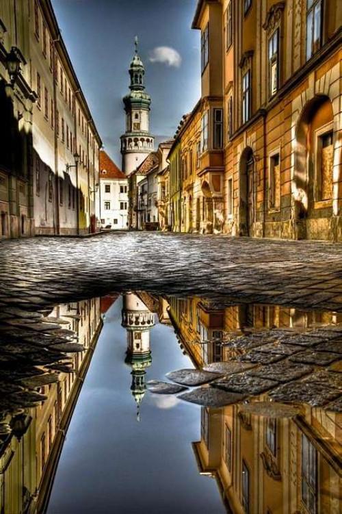 Hillebrand Adrienn - Soproni tükröződés